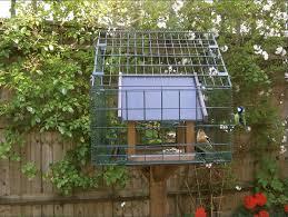 feeder cage.jpg