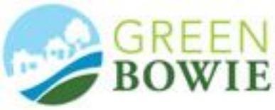 green_bowie_logo