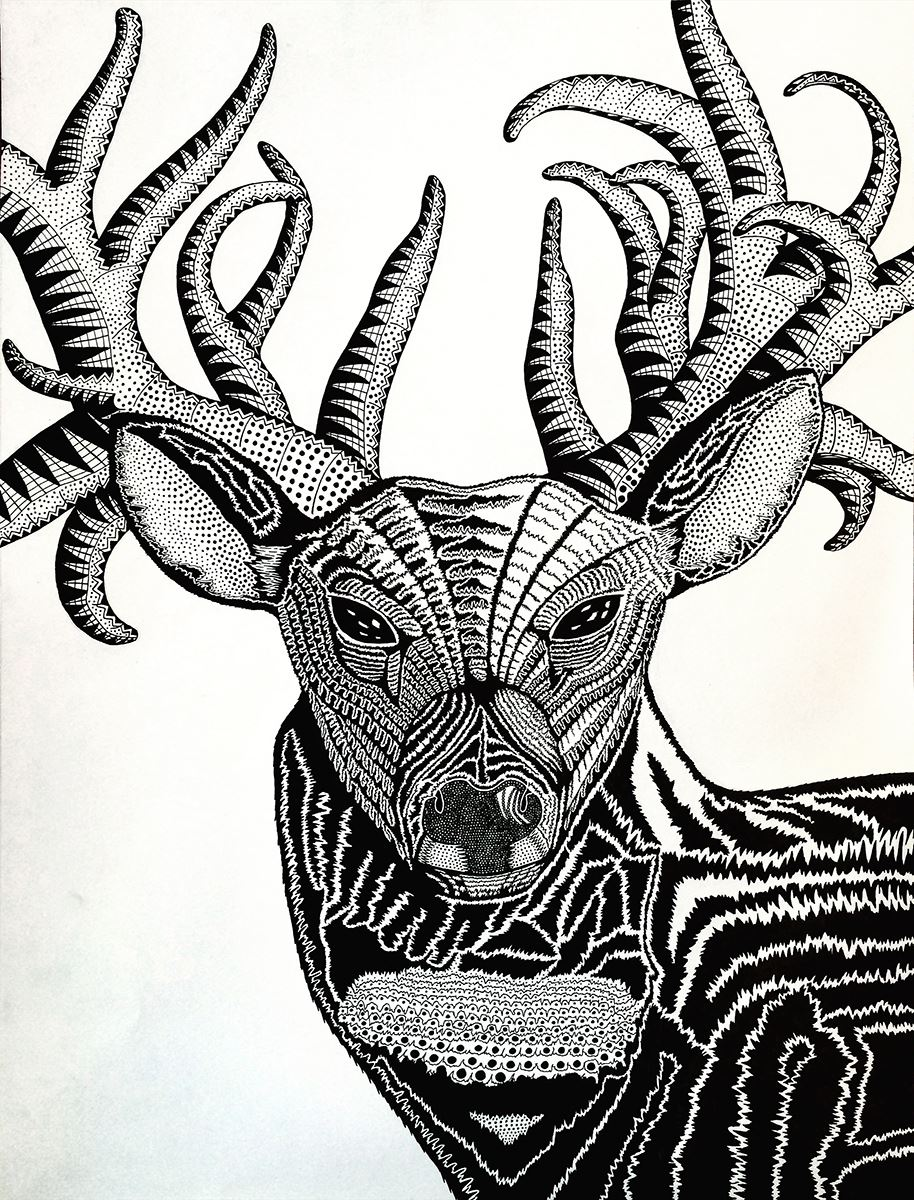Oh Deer by William Thornton