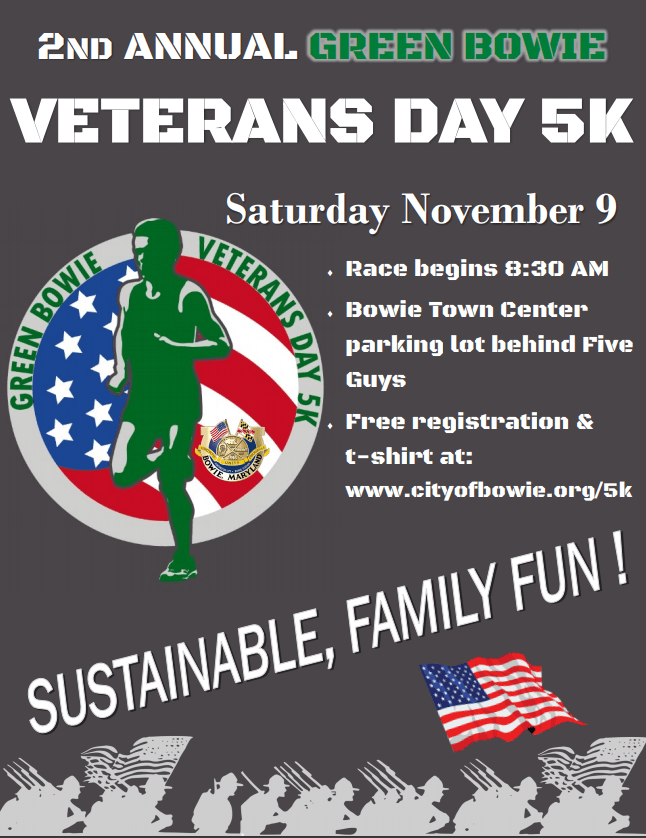 Veterans Day 5k 2019 Flyer