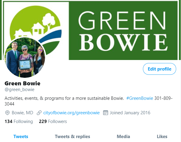 Green Bowie Twitter page pic Opens in new window